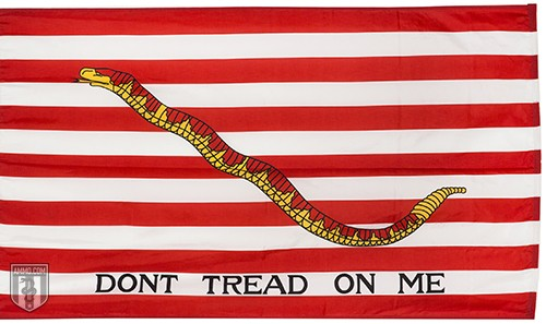 The First Navy Jack Flag