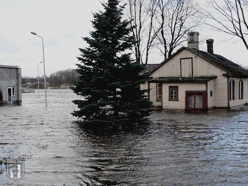 Flooding Preparedness: A Guide to Flood Survival