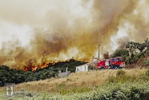 Wildfire Preparedness: A Heatwave Safety Guide