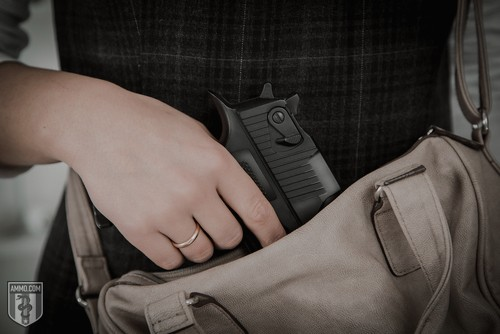 Smart Parent's Guide to Self Defense and Carrying Concealed