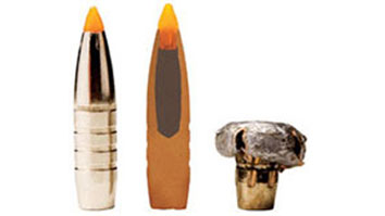 Trophy Bonded Tip Bullet
