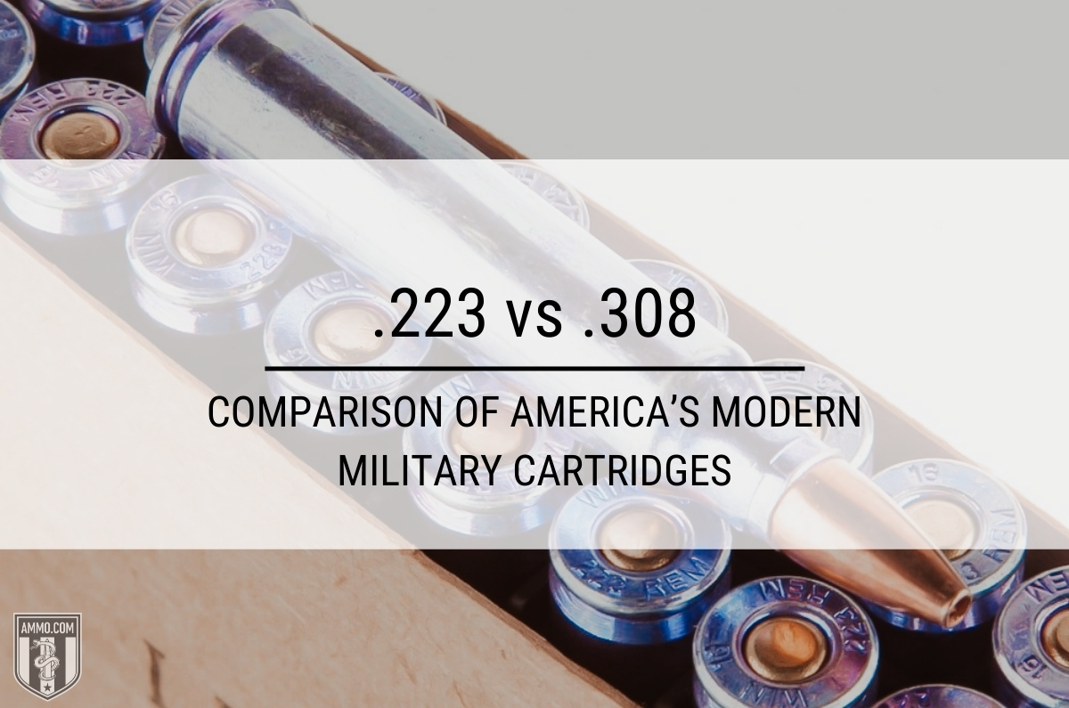 223 vs 308