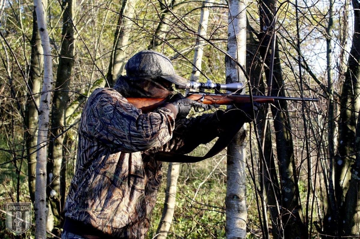 243 vs 308 hunting