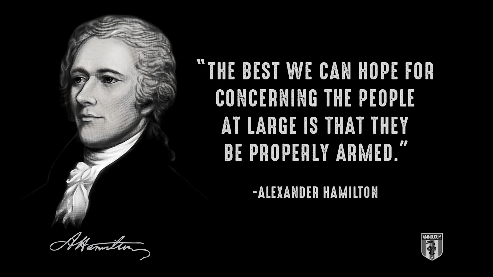 """The best we can hope for concerning the people at large is that they be properly armed."" - Alexander Hamilton"