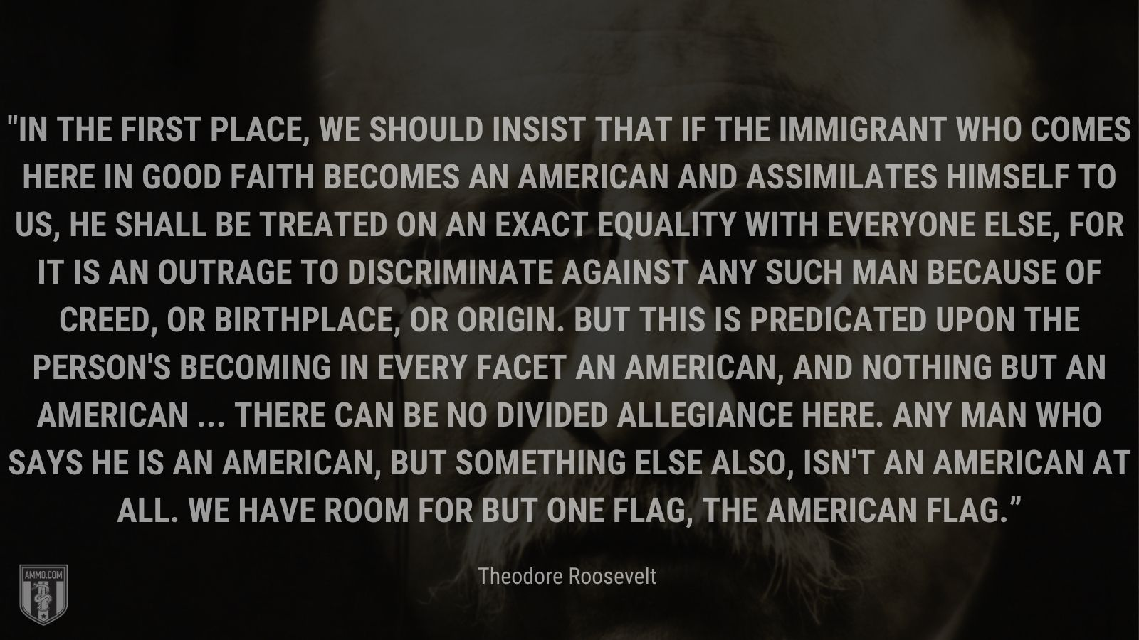 """""""In the first place, we should insist that if the immigrant who comes here in good faith becomes an American and assimilates himself to us, he shall be treated on an exact equality with everyone else, for it is an outrage to discriminate against any such man because of creed, or birthplace, or origin. But this is predicated upon the person's becoming in every facet an American, and nothing but an American ... There can be no divided allegiance here. Any man who says he is an American, but something else also, isn't an American at all. We have room for but one flag, the American flag."""" - Theodore Roosevelt"""
