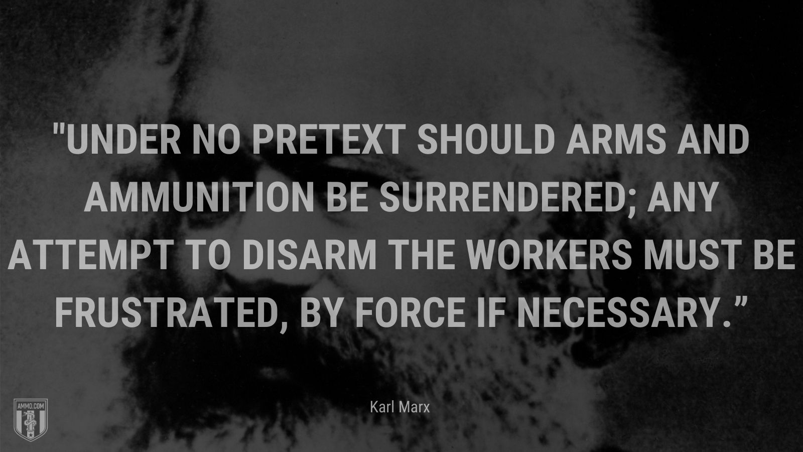"""""""Under no pretext should arms and ammunition be surrendered; any attempt to disarm the workers must be frustrated, by force if necessary."""" - Karl Marx"""