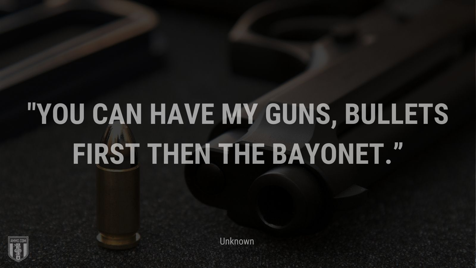 """""""You can have my guns, bullets first then the bayonet."""" - Unknown"""