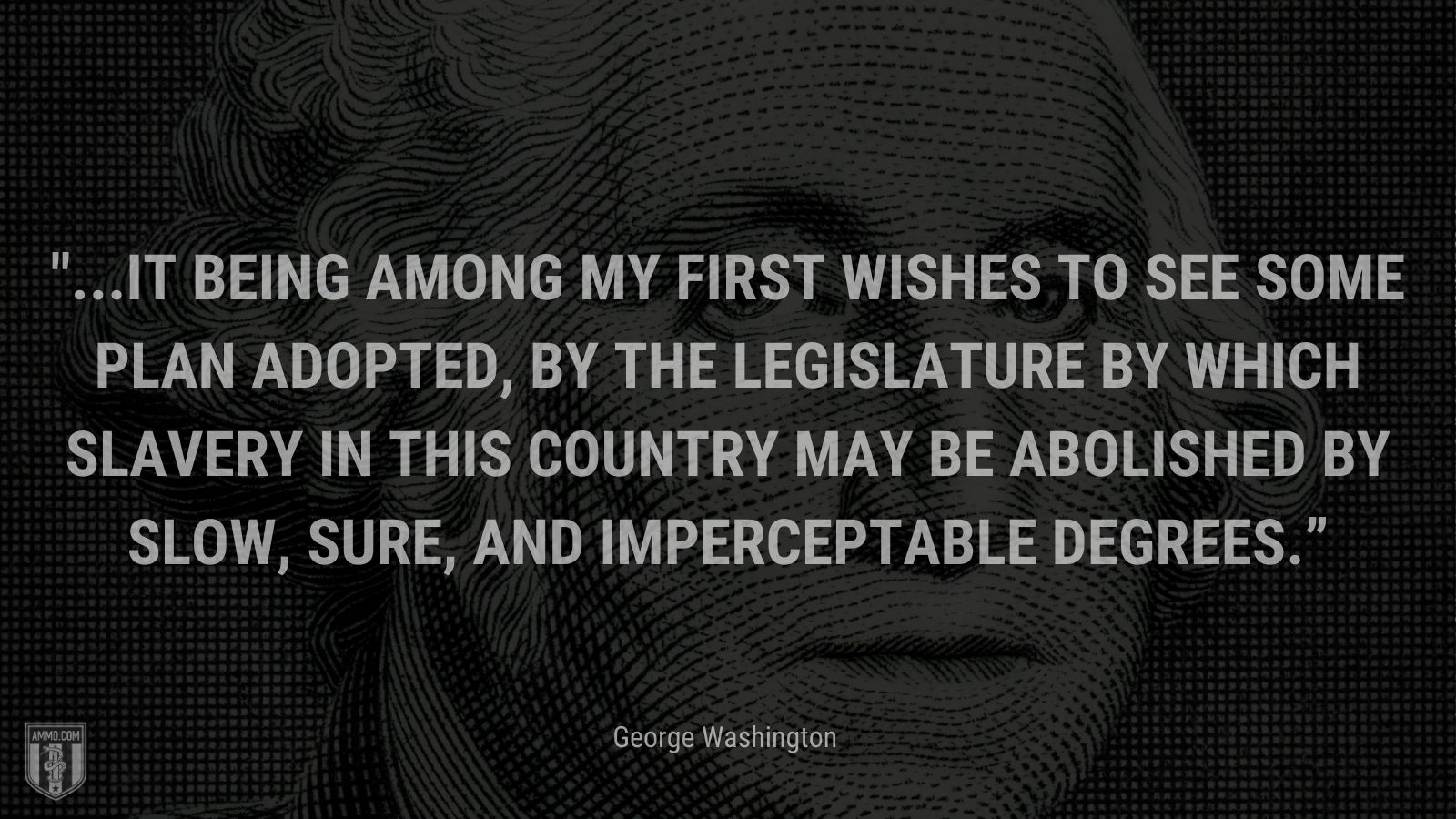 """""""...it being among my first wishes to see some plan adopted, by the legislature by which slavery in this Country may be abolished by slow, sure, and imperceptable degrees."""" - George Washington"""
