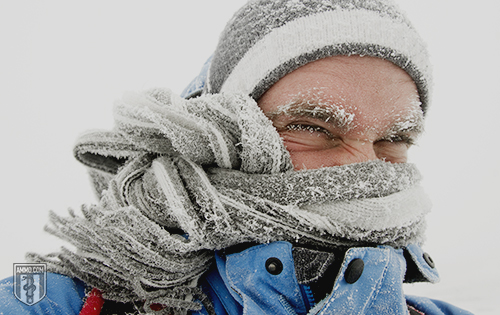 Extreme Cold Preparedness: A Winter Weather Survival Guide