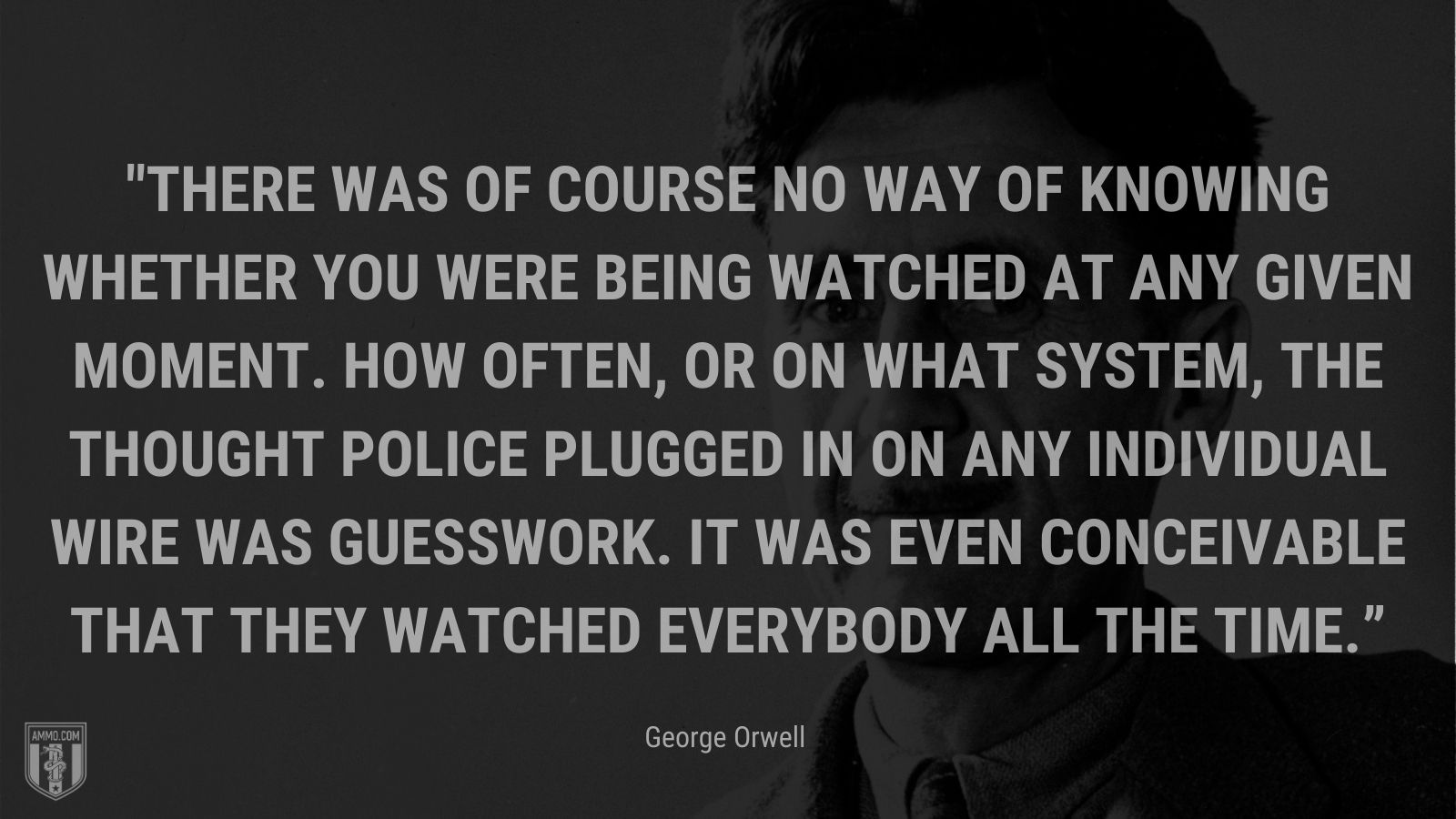 """""""There was of course no way of knowing whether you were being watched at any given moment. How often, or on what system, the Thought Police plugged in on any individual wire was guesswork. It was even conceivable that they watched everybody all the time."""" - George Orwell"""