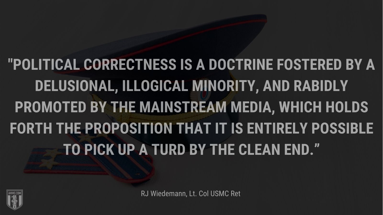 """""""Political correctness is a doctrine fostered by a delusional, illogical minority, and rabidly promoted by the mainstream media, which holds forth the proposition that it is entirely possible to pick up a turd by the clean end."""" - RJ Wiedemann, Lt. Col USMC Ret"""