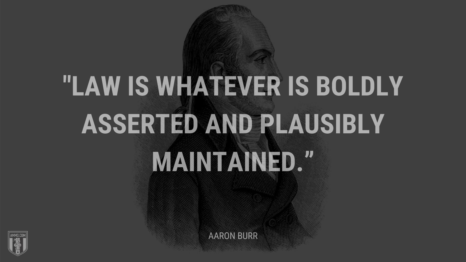 """Law is whatever is boldly asserted and plausibly maintained."" - Aaron Burr"