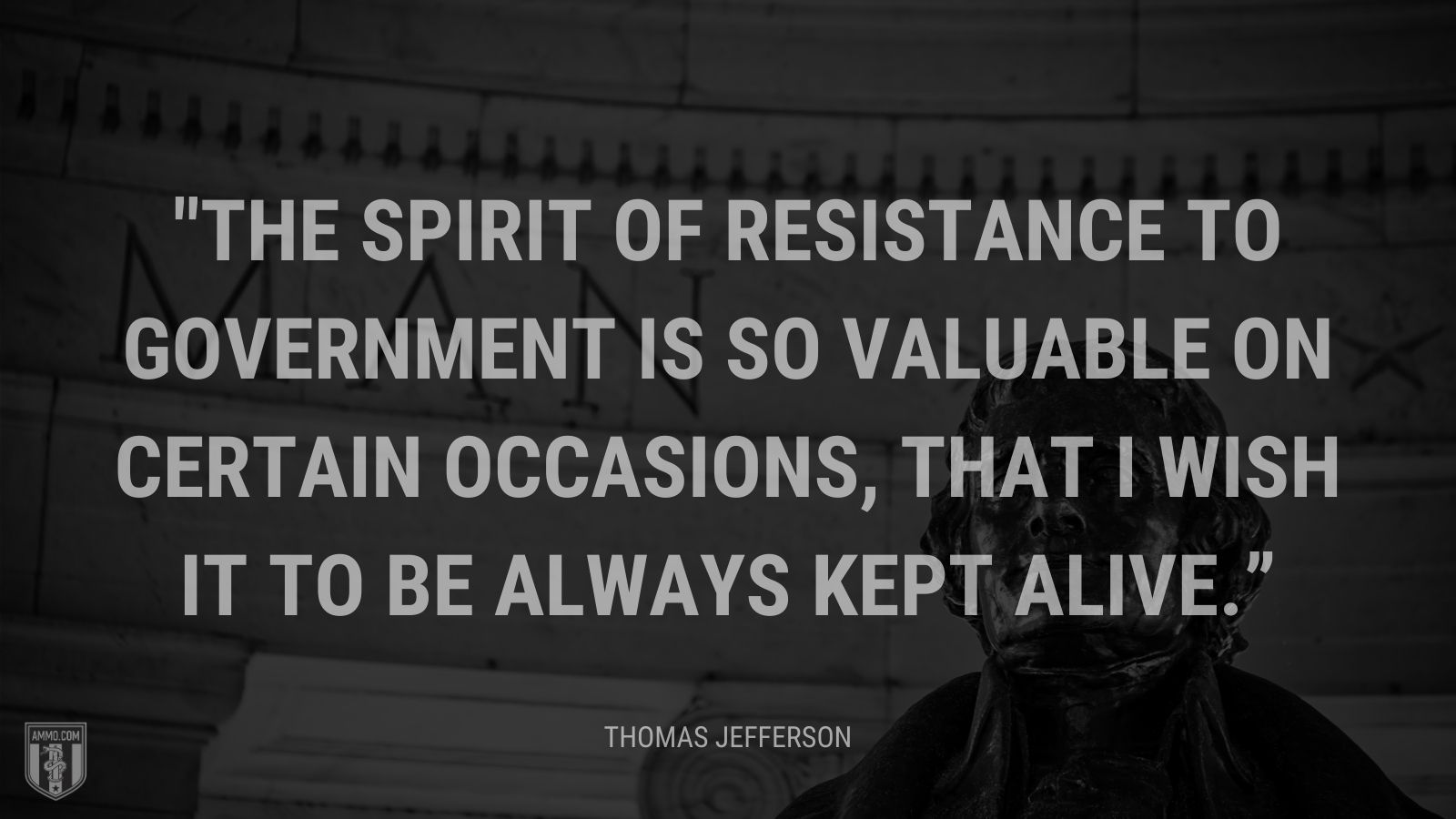 """The spirit of resistance to government is so valuable on certain occasions, that I wish it to be always kept alive."" - Thomas Jefferson"