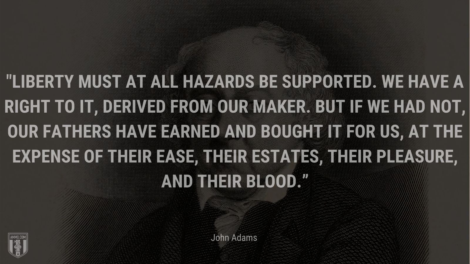 """""""Liberty must at all hazards be supported. We have a right to it, derived from our Maker. But if we had not, our fathers have earned and bought it for us, at the expense of their ease, their estates, their pleasure, and their blood."""" - John Adams"""