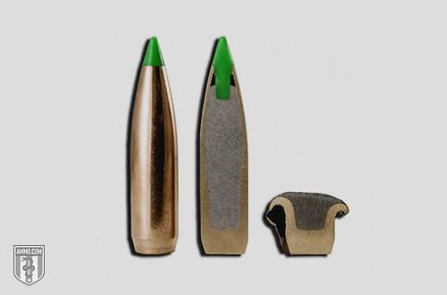 Nosler Ballistic Tip Ammo