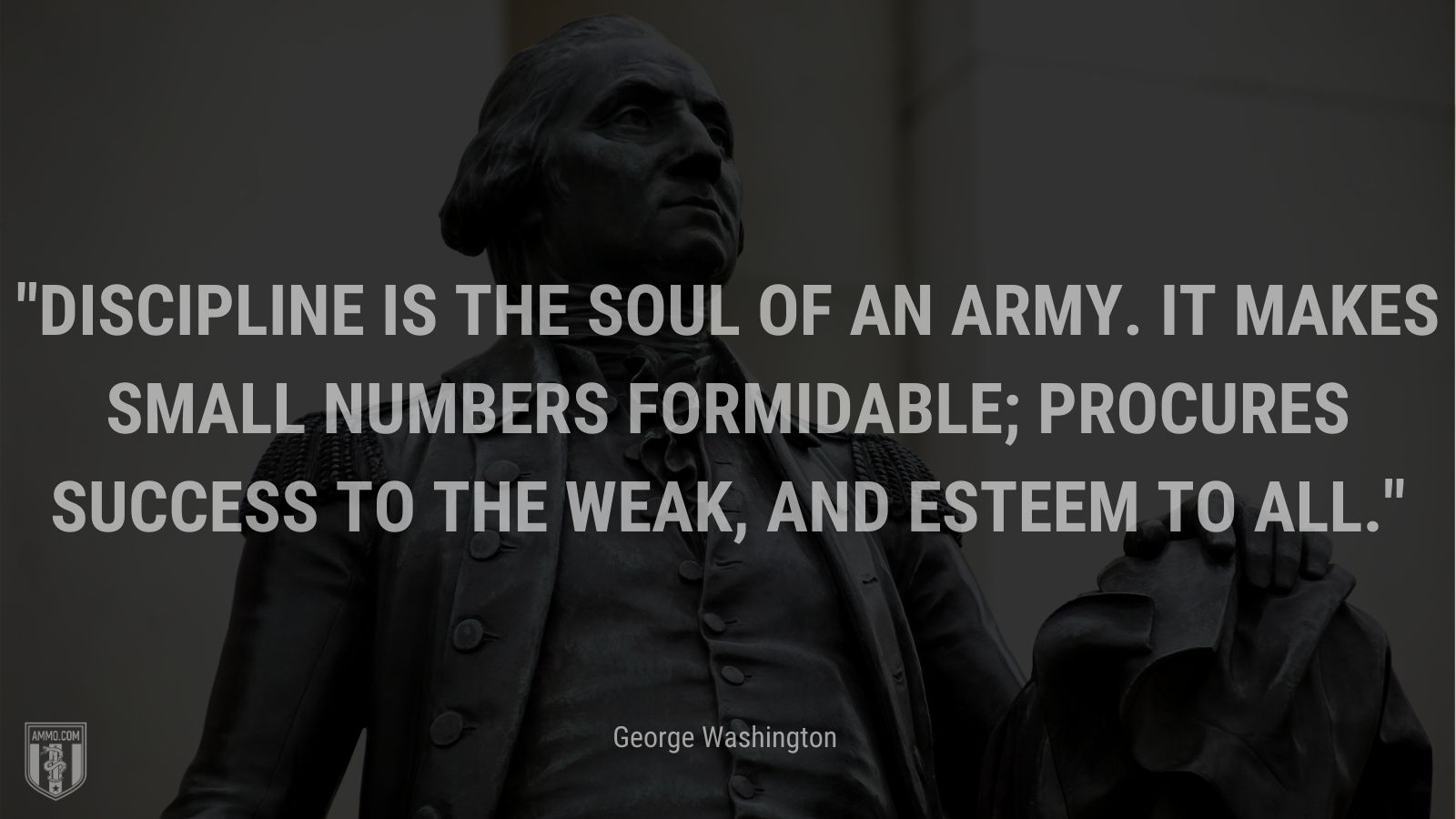 """""""Discipline is the soul of an army. It makes small numbers formidable; procures success to the weak, and esteem to all."""" - George Washington"""
