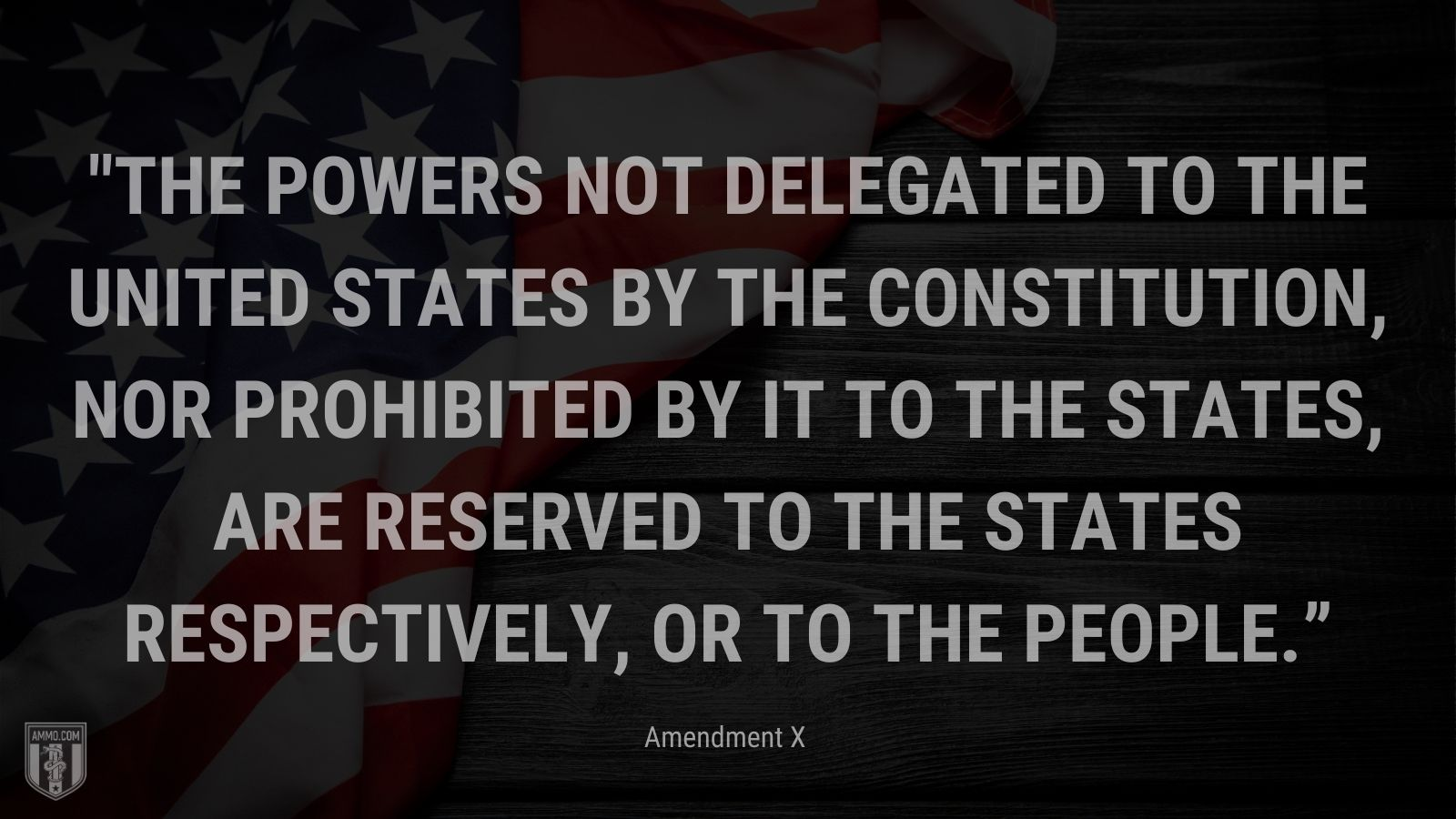 """""""The powers not delegated to the United States by the Constitution, nor prohibited by it to the States, are reserved to the States respectively, or to the people."""" - Amendment X"""