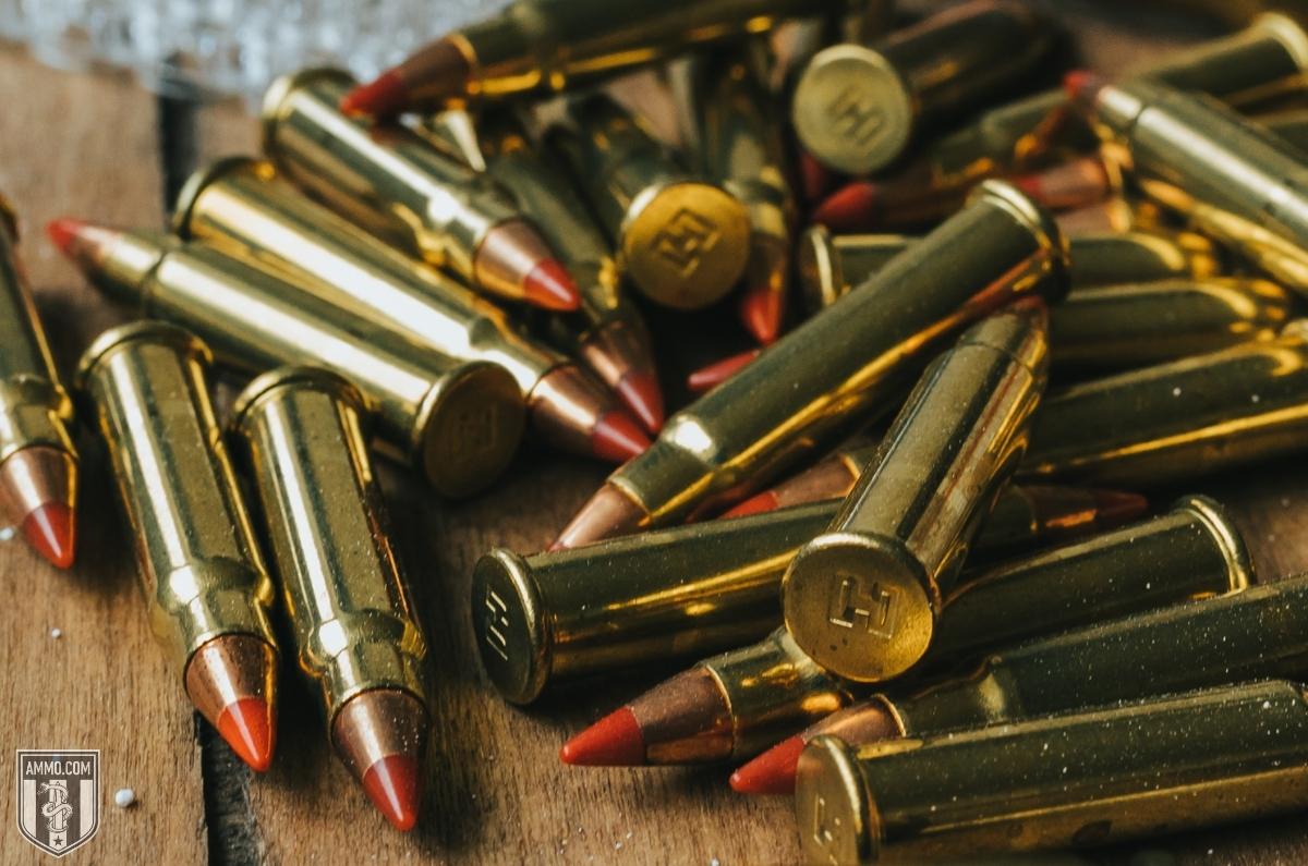 22lr rimfire bullet