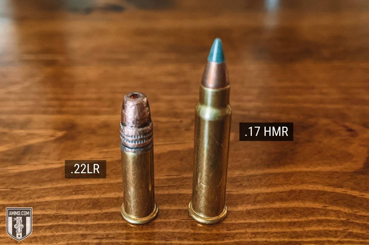 popular rimfire ammo