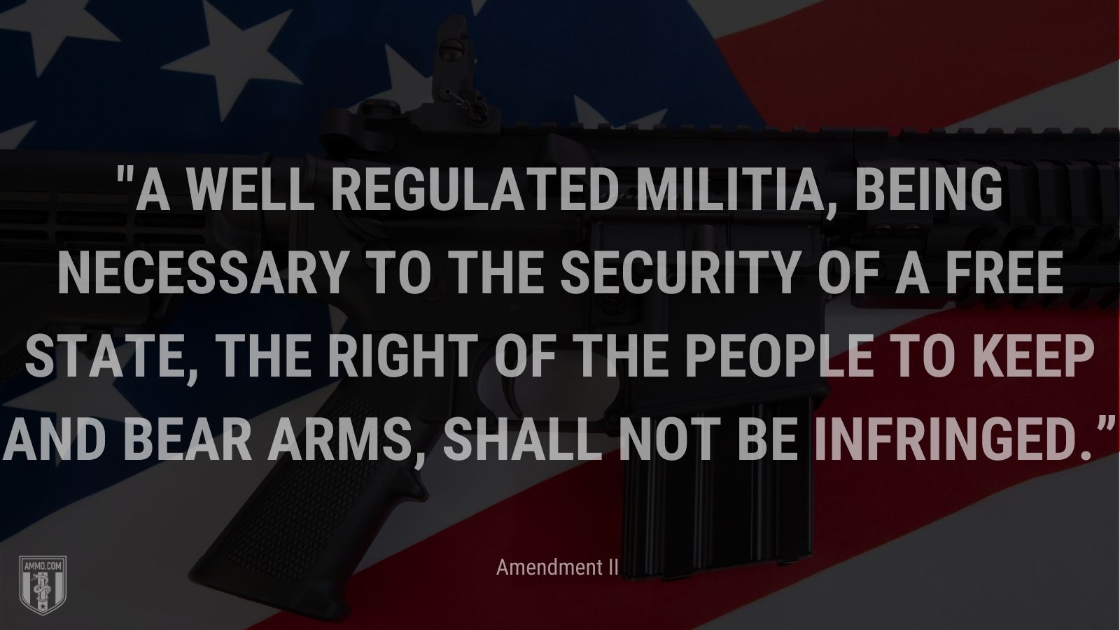 """""""A well regulated Militia, being necessary to the security of a free State, the right of the people to keep and bear Arms, shall not be infringed."""" - Amendment II"""