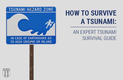 Tsunami Preparedness: A Seismic Wave Survival Guide