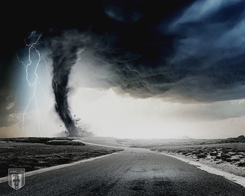 Thunderstorm Preparedness: A Guide to Storm Survival
