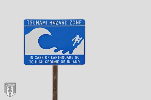 Tsunami Preparedness: A Seismic Wave Survival Guide