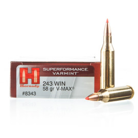 Image For 20 Rounds Of 58 Grain V-MAX Boxer Brass 243 Win Hornady Ammunition