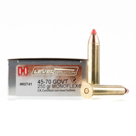 Image For 20 Rounds Of 250 Grain FTX Boxer Brass 45-70 Govt Hornady Ammunition