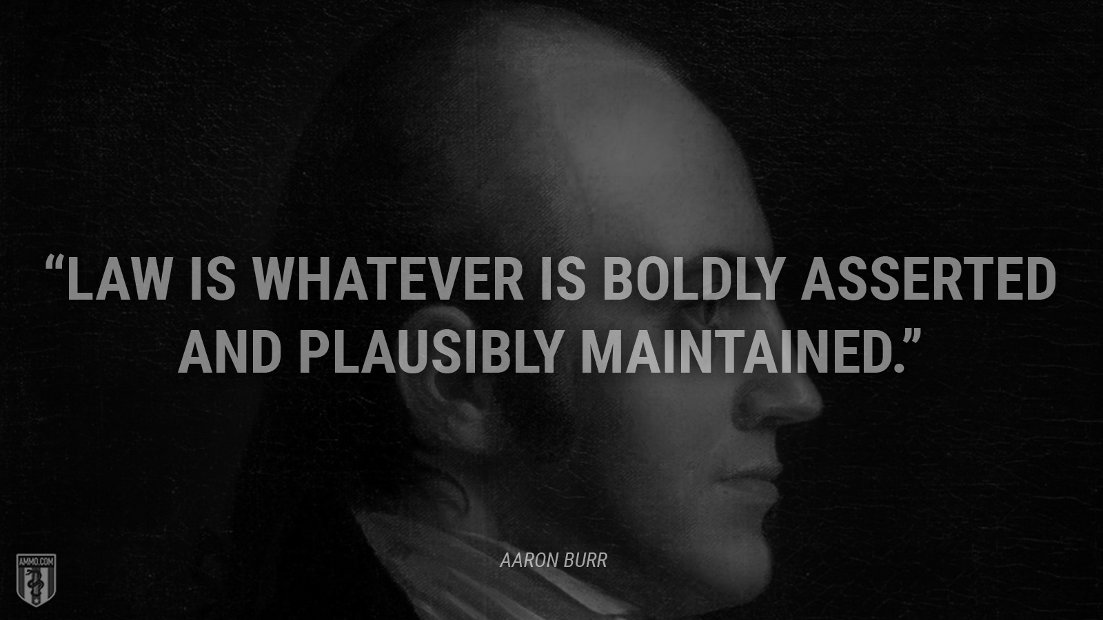 """""""Law is whatever is boldly asserted and plausibly maintained."""" - Aaron Burr"""