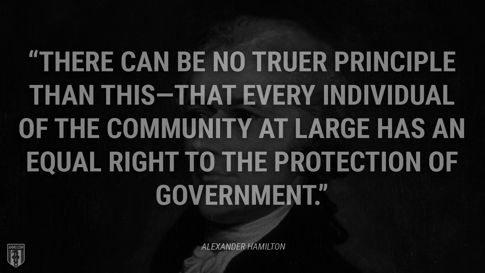 """""""There can be no truer principle than this—that every individual of the community at large has an equal right to the protection of government."""" - Alexander Hamilton"""