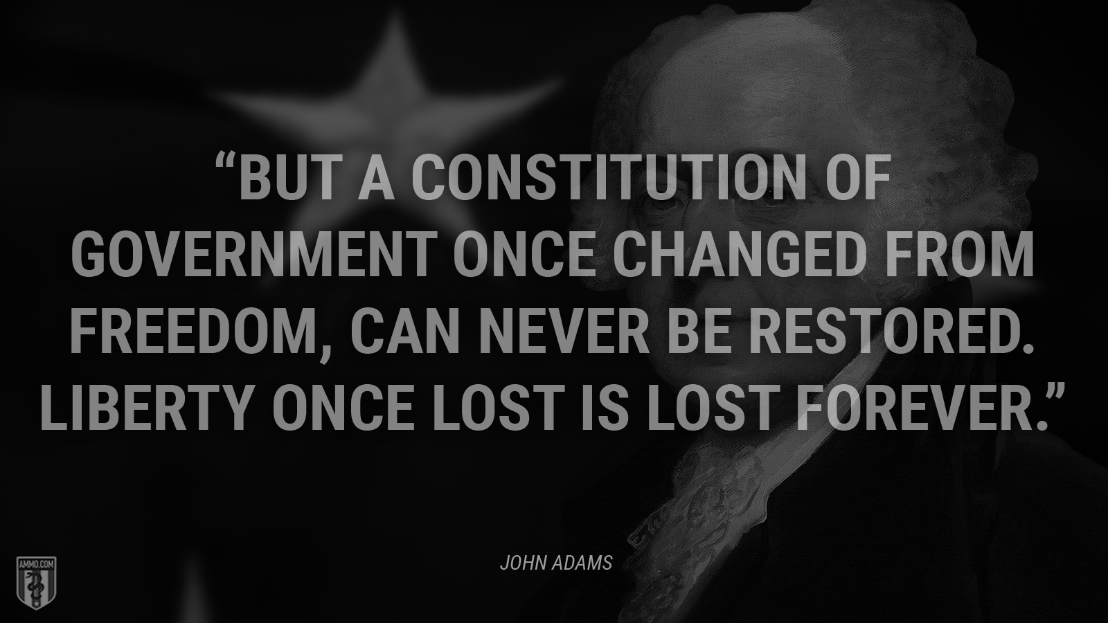 """But a Constitution of Government once changed from Freedom, can never be restored. Liberty once lost is lost forever."" - John Adams"