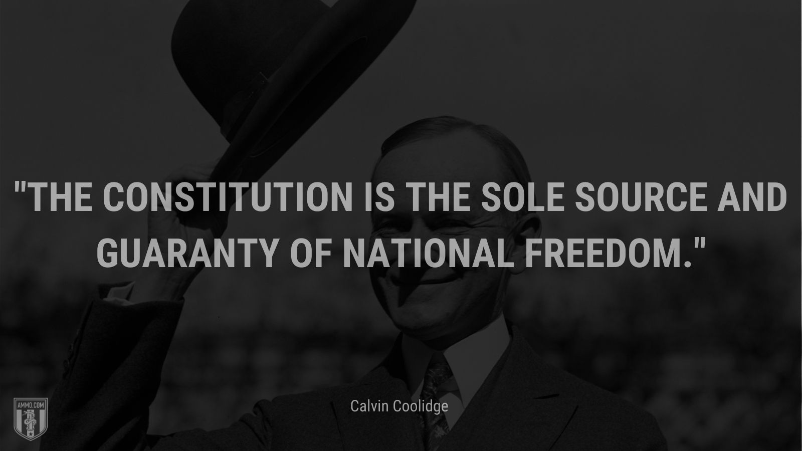 """""""The Constitution is the sole source and guaranty of national freedom."""" - Calvin Coolidge"""