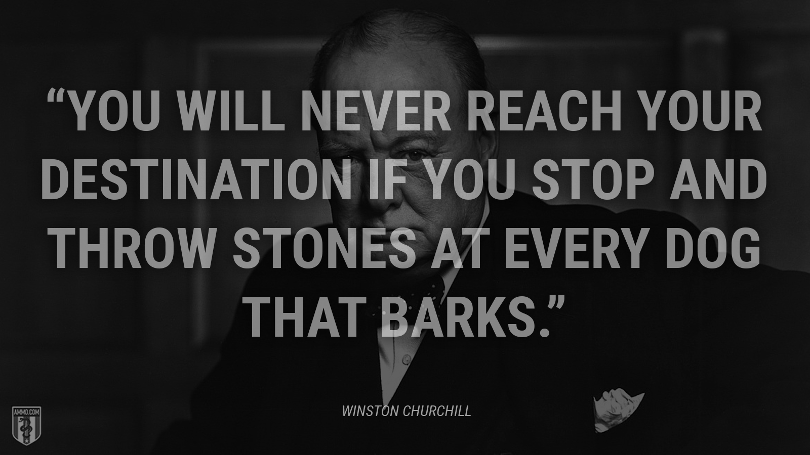 """You will never reach your destination if you stop and throw stones at every dog that barks."" - Winston Churchill"