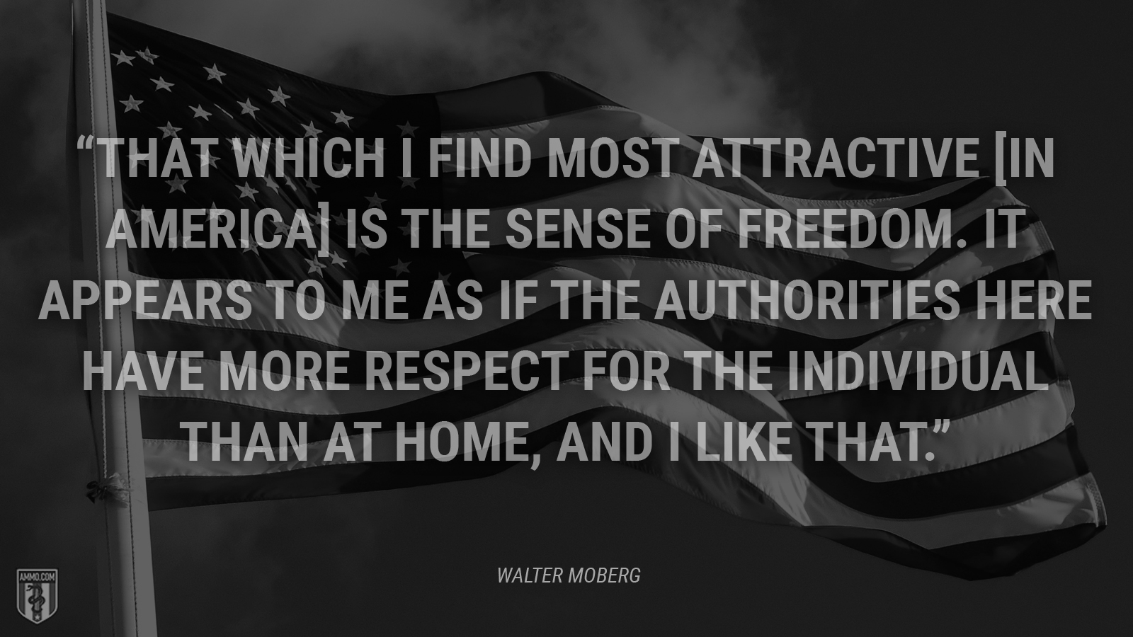 """That which I find most attractive [in America] is the sense of freedom. It appears to me as if the authorities here have more respect for the individual than at home, and I like that."" - Walter Moberg"