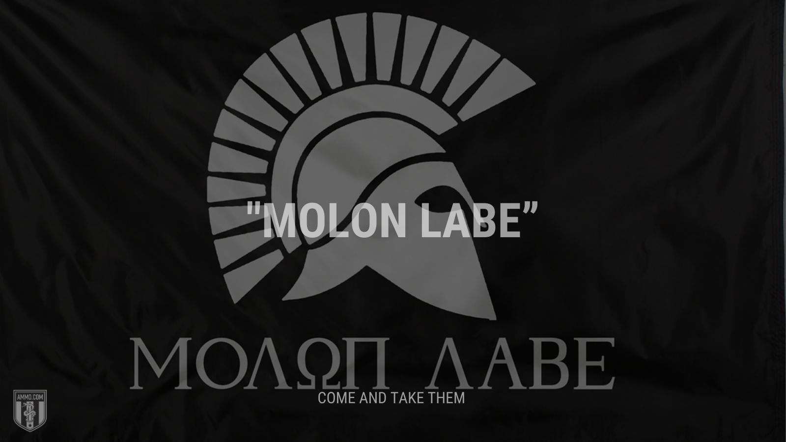 """""""Molon Labe"""" - Come and take them"""