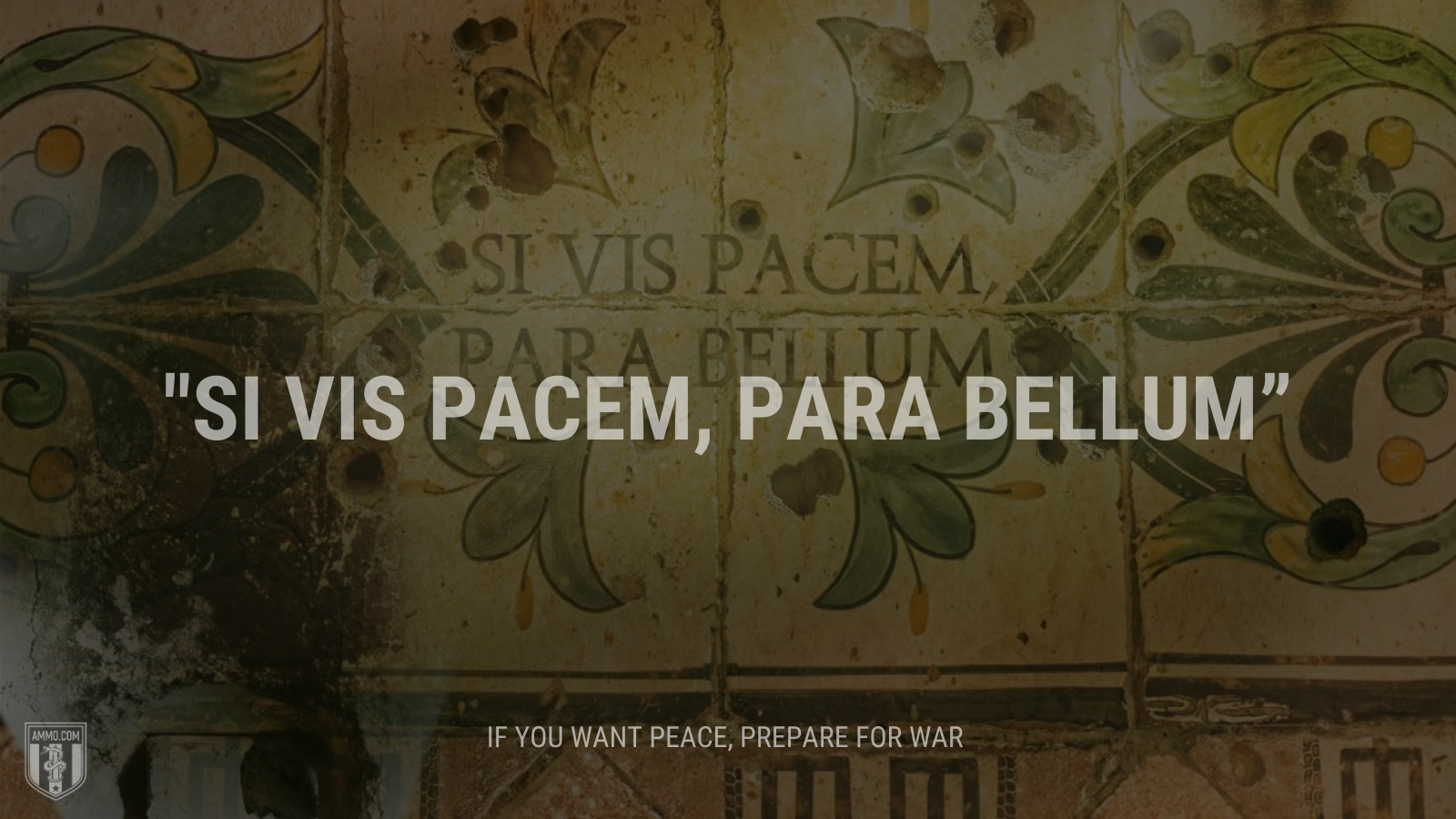 """""""Si vis pacem, para bellum"""" - If you want peace, prepare for war"""