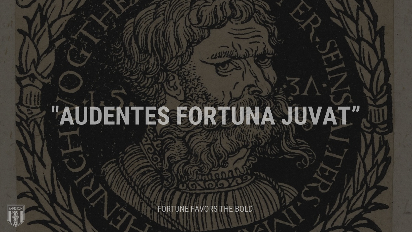 """""""Audentes fortuna juvat"""" - Fortune favors the bold"""