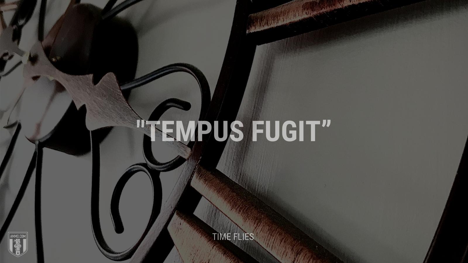 """Tempus fugit"" - Time flies"