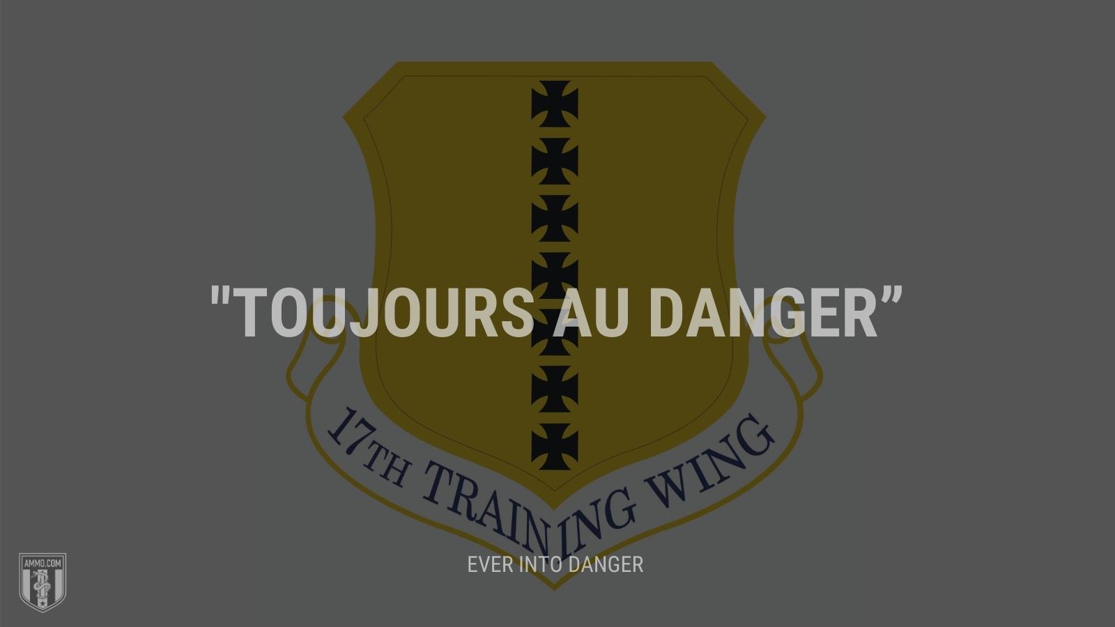 """Toujours au danger"" - Ever into danger"