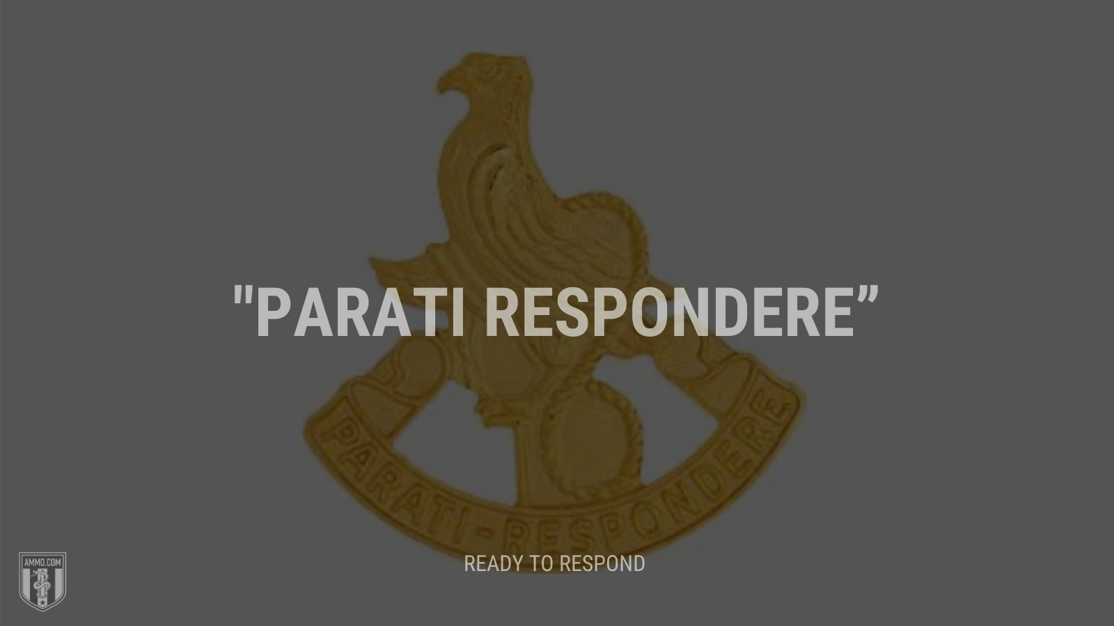 """Parati respondere"" - Ready to respond"