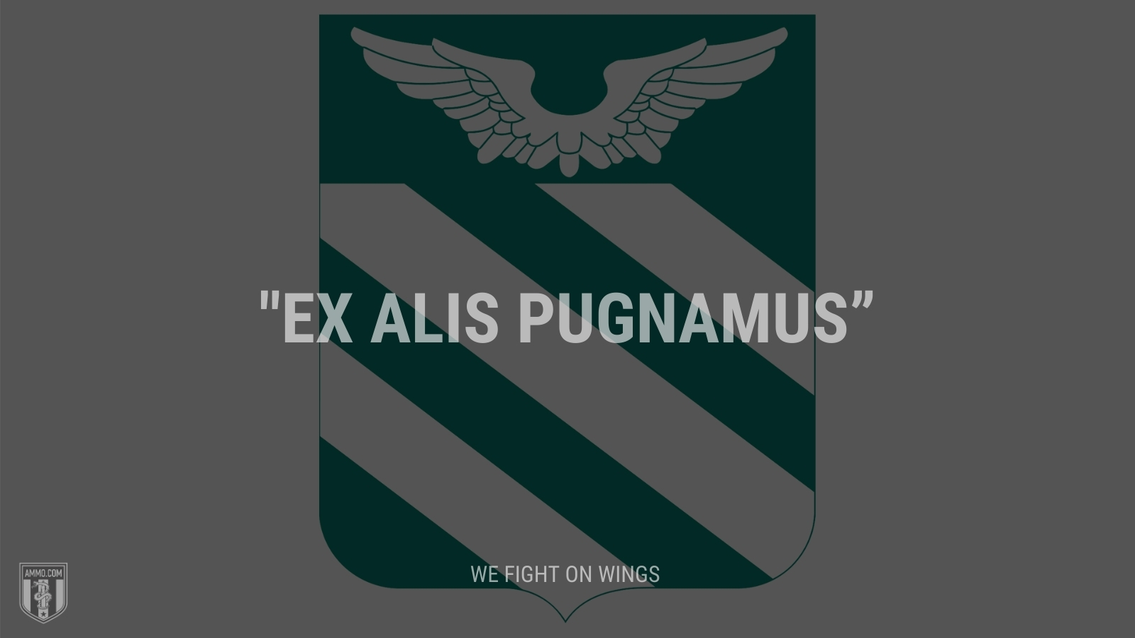 """Ex alis pugnamus"" - We fight on wings"