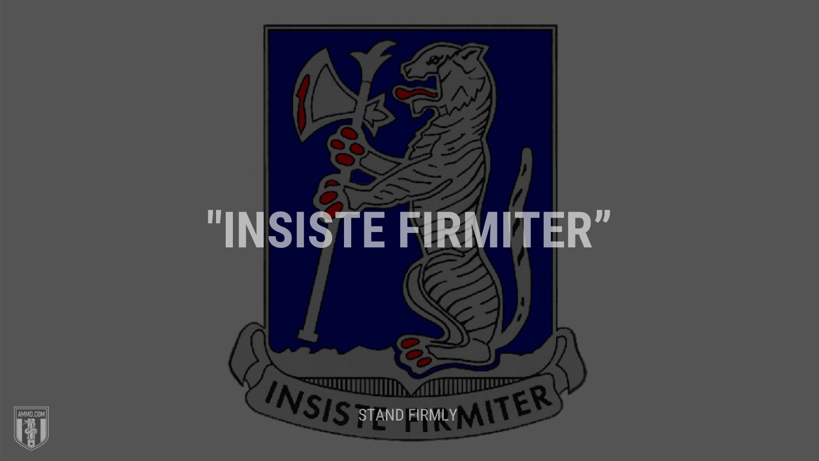 """""""Insiste firmiter"""" - Stand firmly"""