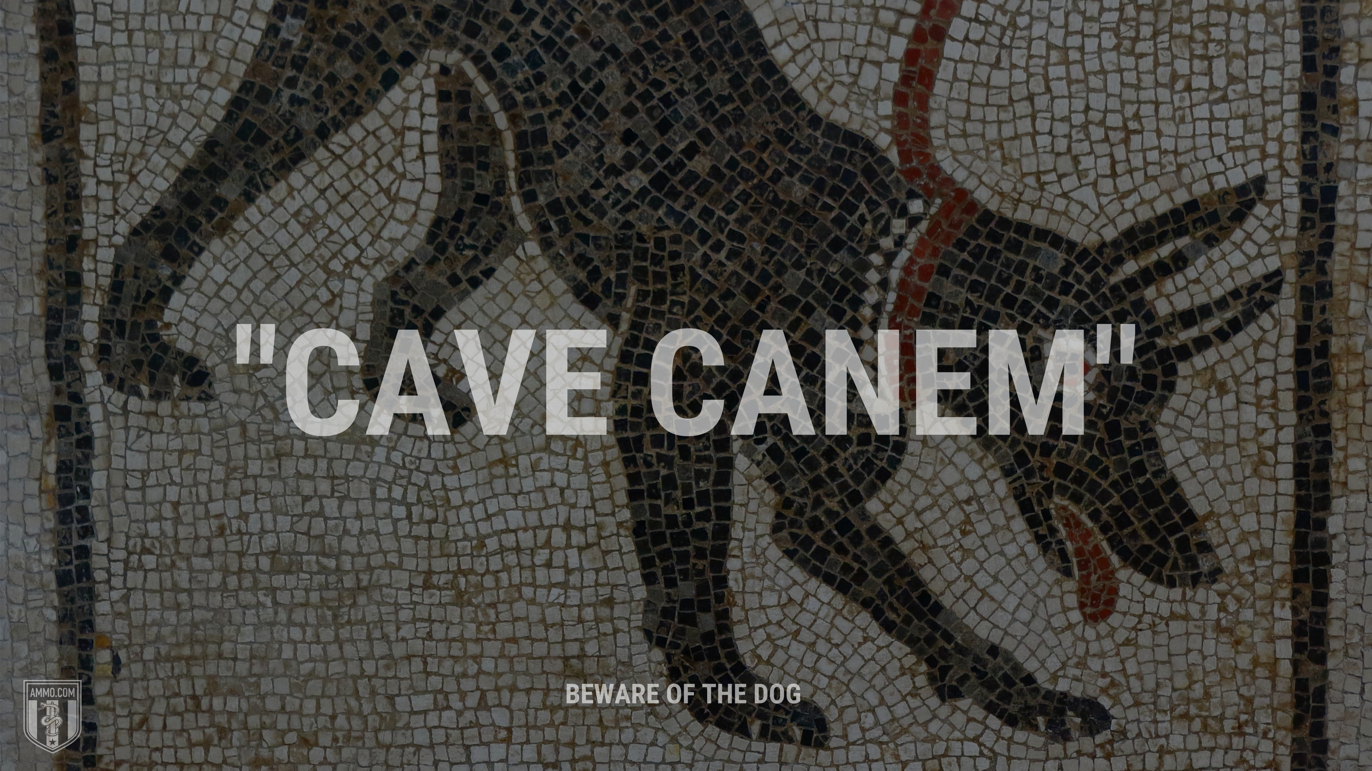 """""""Cave Canem"""" - Beware of the dog"""