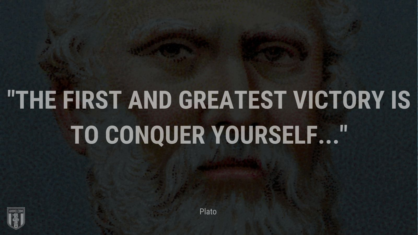 """""""The first and greatest victory is to conquer yourself... - Plato"""