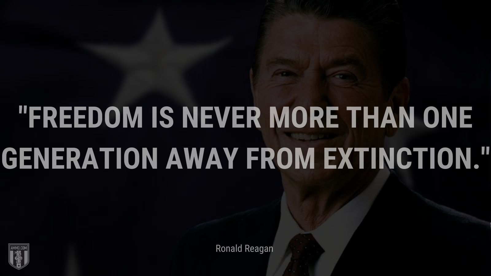 """""""Freedom is never more than one generation away from extinction. - Ronald Reagan"""