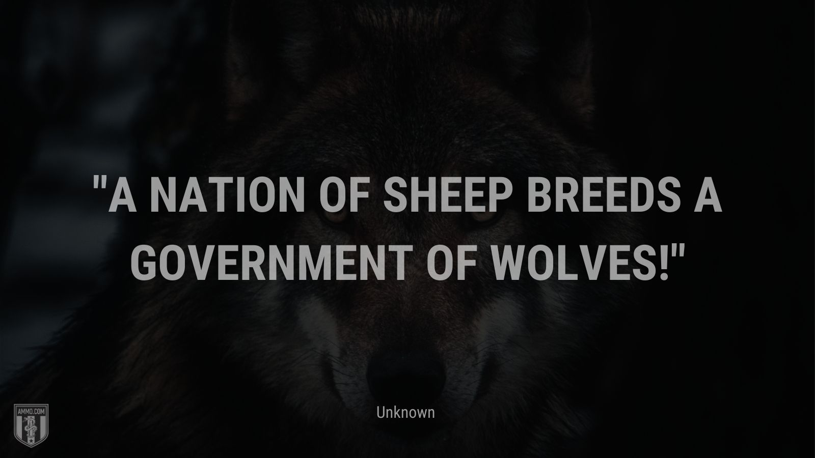 """""""A nation of sheep breeds a government of wolves! - Unknown"""