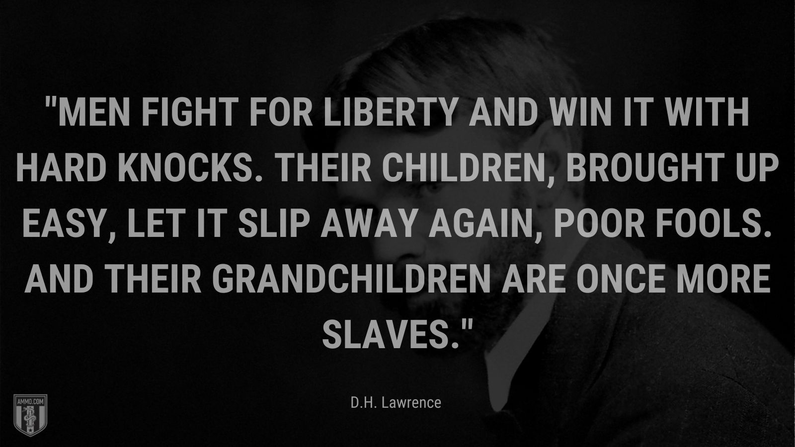 """""""Men fight for liberty and win it with hard knocks. Their children, brought up easy, let it slip away again, poor fools. And their grandchildren are once more slaves."""" - D.H. Lawrence"""