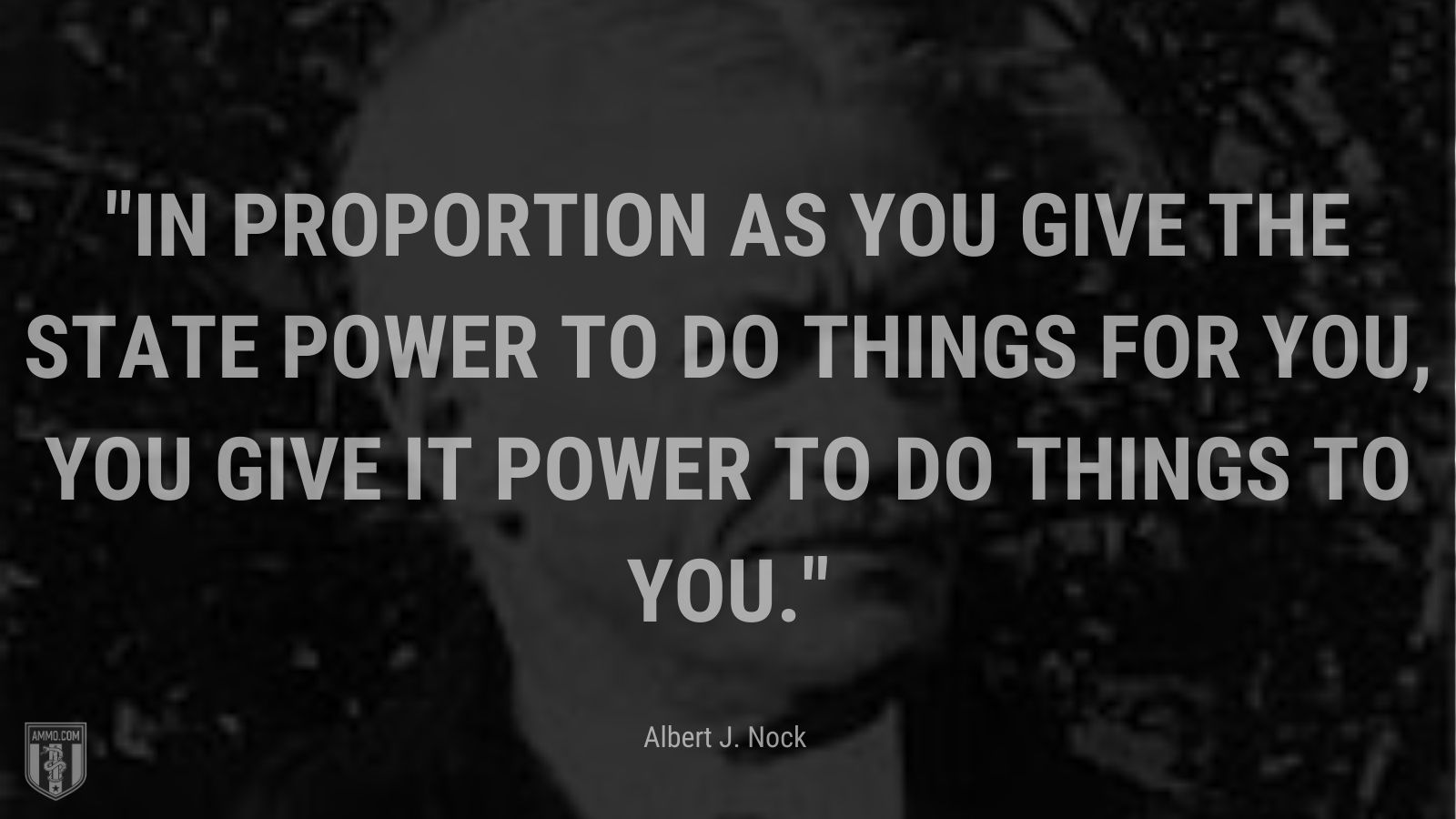 """""""In proportion as you give the state power to do things for you, you give it power to do things to you."""" - Albert J. Nock"""