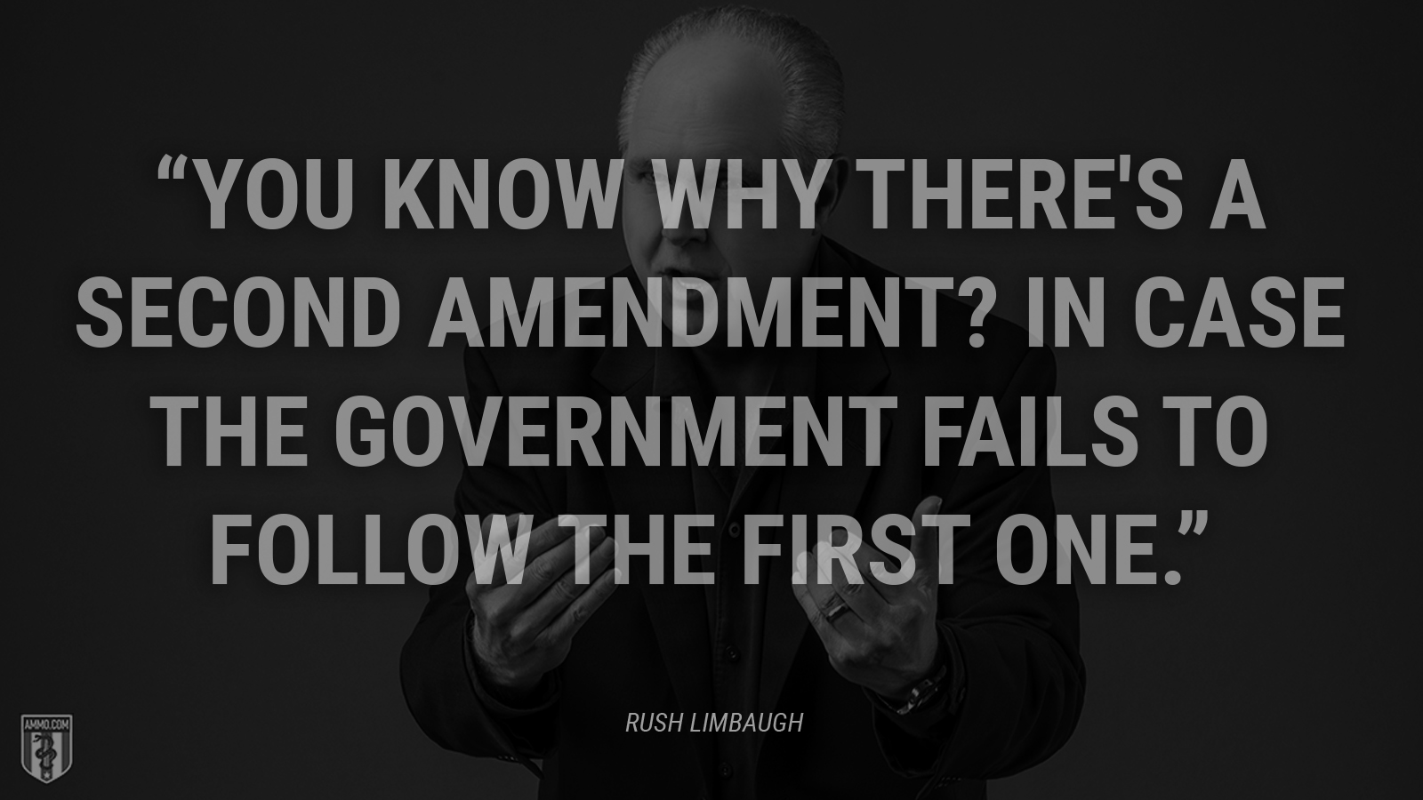 """You know why there's a Second Amendment? In case the government fails to follow the first one."" - Rush Limbaugh"